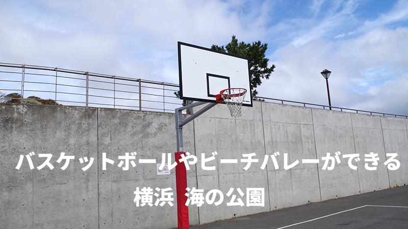 バスケ ゴール 公園