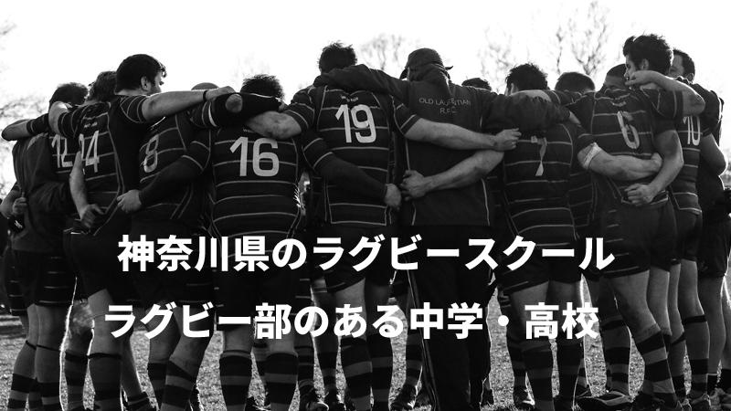 神奈川 ラグビースクール 部活